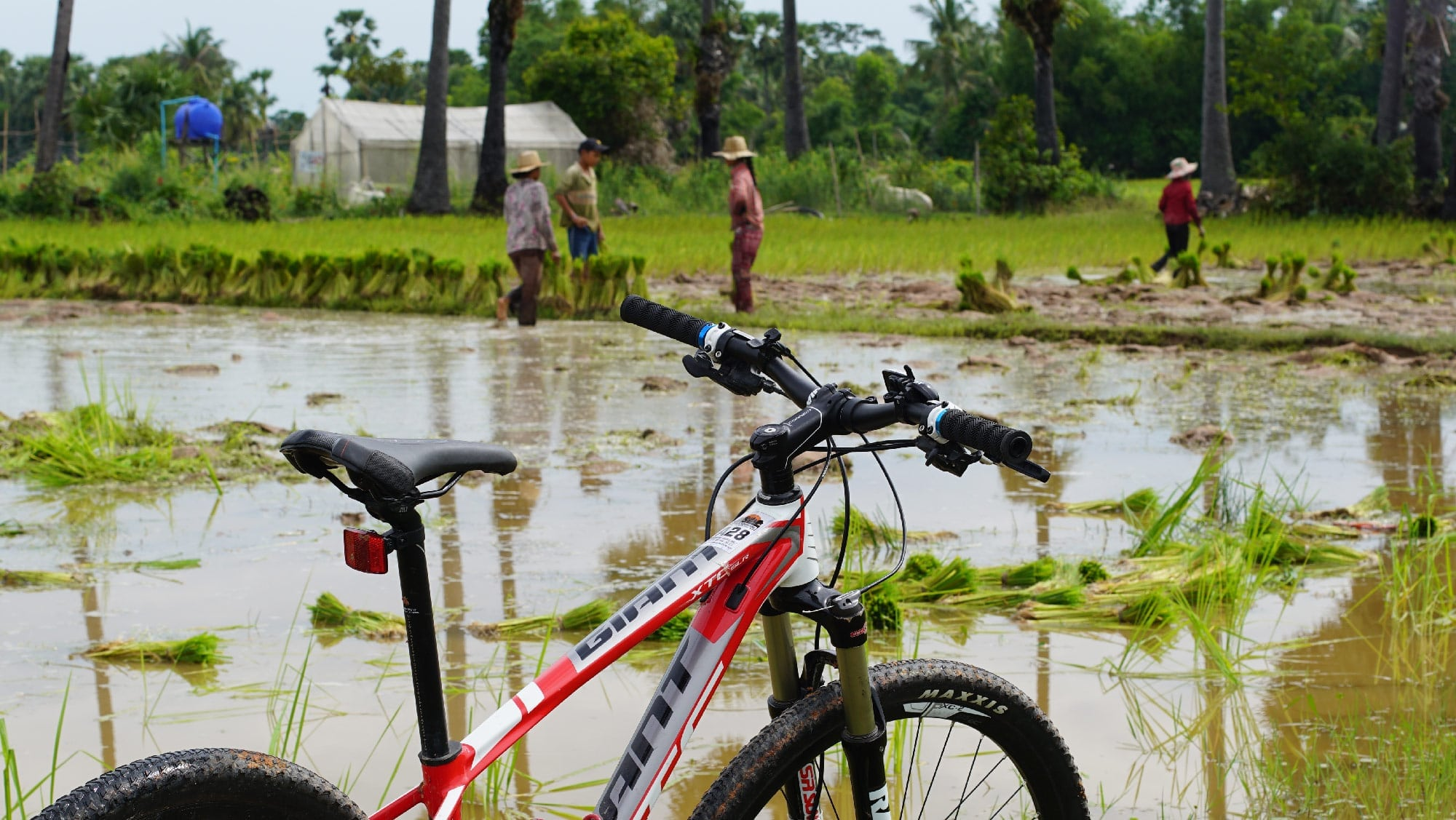 Angkor Bicycle Tour