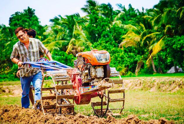 Ploughing Rice Field